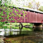 Covered Bridge-Zooks by Val Dunn