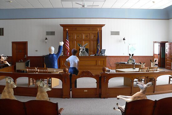 I object!  How is my client supposed to get a fair trial….this is nothing but a kangaroo court!!! by Susan Littlefield