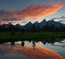 Schwabacher Landing - Grand Teton National Park, Wyoming by Mary Warner