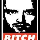 Jesse Pinkman - Obey, bitch by Vajradhara
