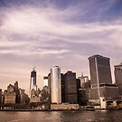 New York City by Tim Cowley