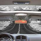Colorado Road Trip by Bo Insogna