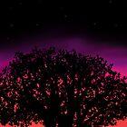 Sunset by backlash92