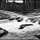 Elbow Falls- Upstream view by Hari Saripalli