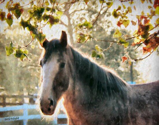 Bright Morning Beauty by Rhonda Strickland