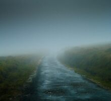 Misty Road by Dimuthu  Sudasinghe