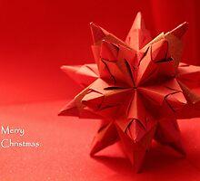 Christmas Card 4 by vbk70