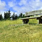 The Lonely Bench by srhayward