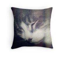 kitty 2 Throw Pillow