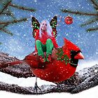 The Cardinal &amp; The Christmas Fairy by Elizabeth Burton