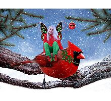 The Cardinal & The Christmas Fairy Photographic Print