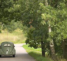 Classic Beetle by Stefan Bau