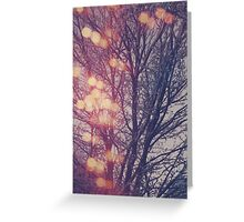 All the pretty lights (2) Greeting Card