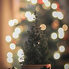 Christmas Tree by IonaSpence