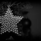 Christmas Star by Lou Wilson