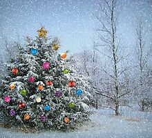 Decorated Winter by Linda Miller Gesualdo