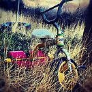 Old Bike by Lady  Dezine