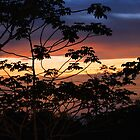 Costa Rica Sunset by Miriam Gordon