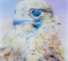 Falke by EckhardBesuden