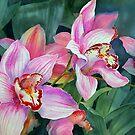 Cymbidium Orchid by Ann Mortimer