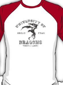Summon A Dragon  T-Shirt