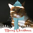 Meowy Christmas by Jeanette Muhr