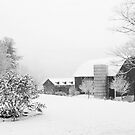 First snow of 2012 B&W by Penny Rinker
