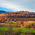 Landscape by Kanelov