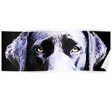 Black Labrador Retriever Dog Art - Lab Eyes Poster