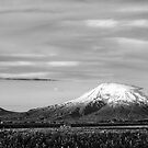 Mount Ararat by Ryan Carter