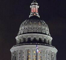 Texas State Capitol Dome at Night by Navigator