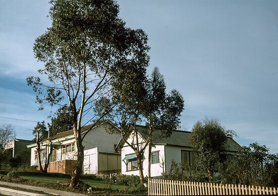 Bible street Eltham 196805050019 by Fred Mitchell