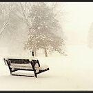 Snowy Seat by KBritt
