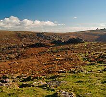 Dartmoor Landscape by Paul Hutchinson