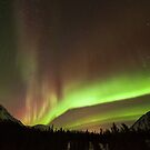 Yukon Northern Lights 4 by Phil Hart