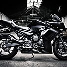 Yamaha Diversion F profile view BW by htrdesigns
