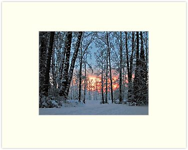 Twilight Snow Walk by Heather Wade