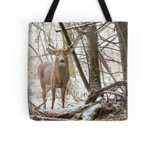 Edge of the Woods Tote Bag