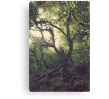 In Our Own Little Magical World Canvas Print