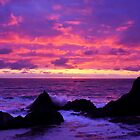 Pink Sunset on the Oregon Coast by DArthurBrown