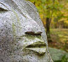Granite Face  by R Prentiss