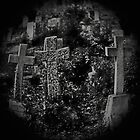 Chingford Mount Cemetery by Black-Light