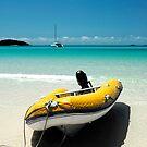 Tropical Breeze - Whitsunday Island by Barbara Burkhardt