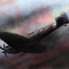 Spitfire Douglas Bader by dangerpowers123
