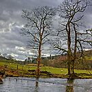 The River Rothay by Tom Gomez