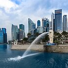 Merlion Park by Kelvin Won