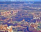 Aerial of Canyonlands, The Needles by Margaret  Hyde