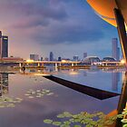 Singapore - Reflections of a City by Maxwell Campbell