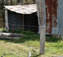Battered old barn by Fran Woods