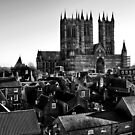 Lincoln Cathedral by Lee  Gill